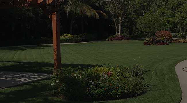 West Palm Beach Landscaping